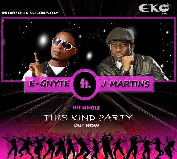 E-Gnyte Single Cover